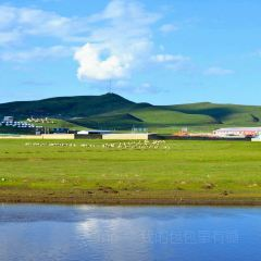 Western District Tourist Ranch User Photo