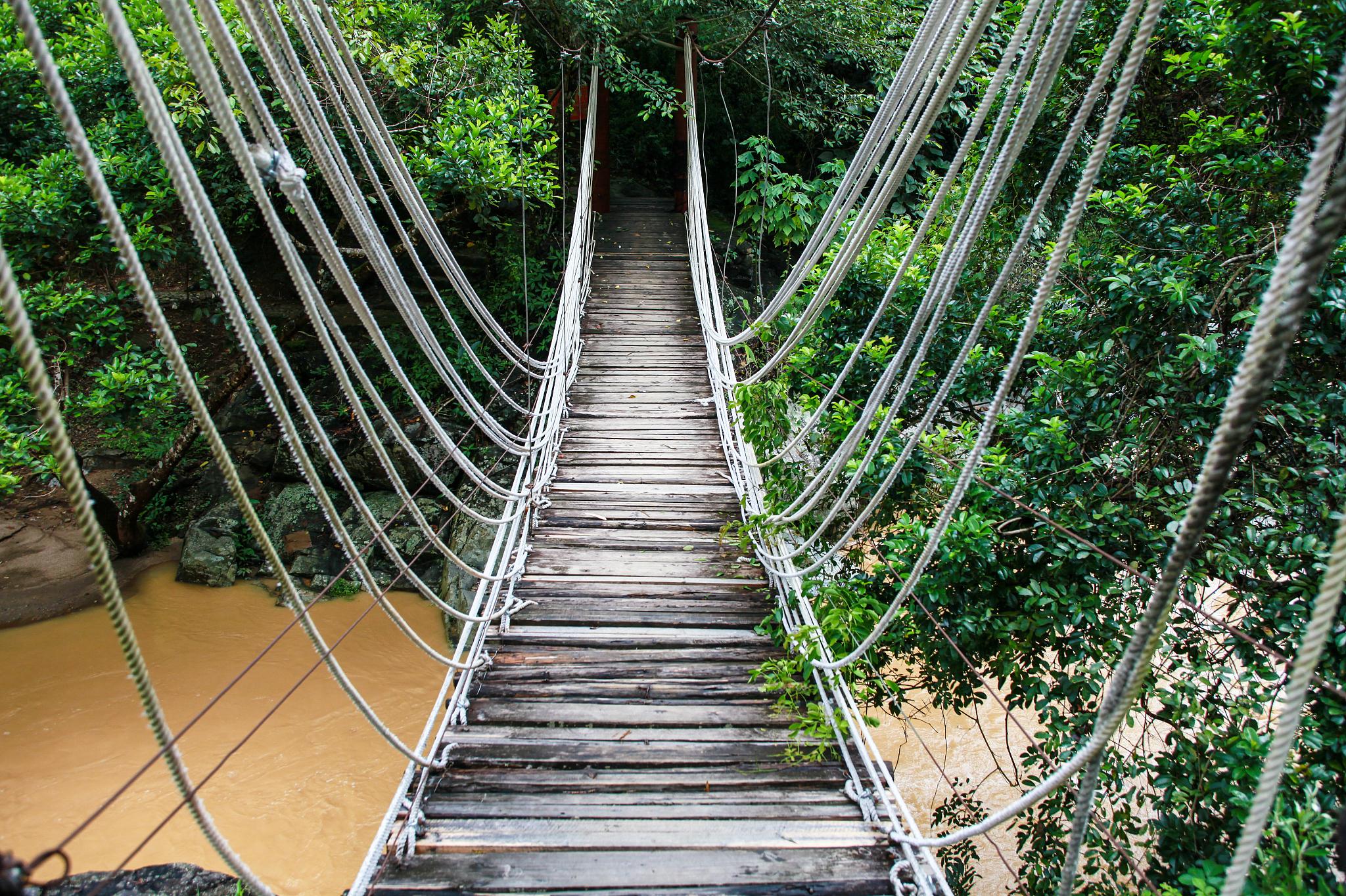 Wuzhishan Tropical Rainforest