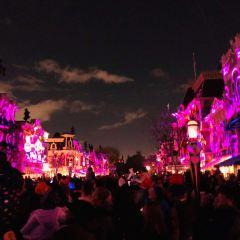 迪士尼主題樂園度假區用戶圖片