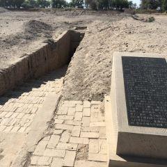 阿斯塔那古墓群用戶圖片