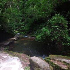 Liupanshan National Forest Park User Photo