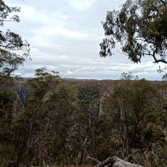 Oxley Wild RIvers Nationalpark User Photo