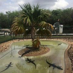 Gator Park User Photo