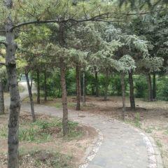 團結公園用戶圖片
