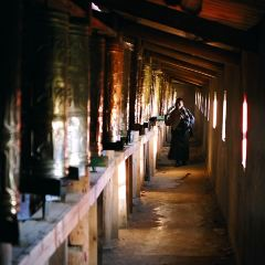 格爾登寺用戶圖片