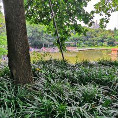 本溪水洞風景區-涼亭用戶圖片
