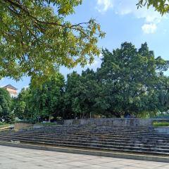 Baise People's Park (Southwest Gate) User Photo
