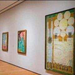 馬蒂斯美術館用戶圖片