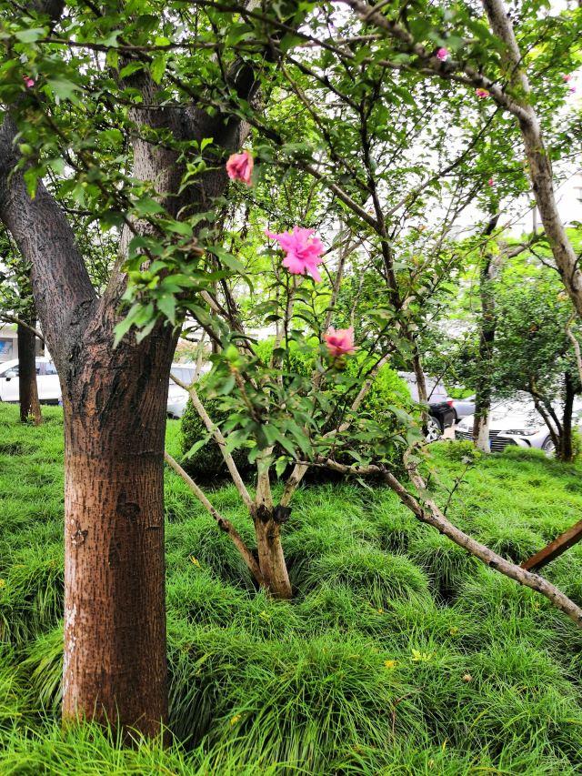 란저우 어린이 공원
