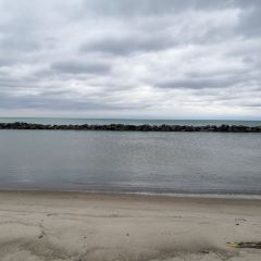 Hanlan's Point Beach User Photo