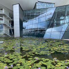 ArtScience Museum User Photo