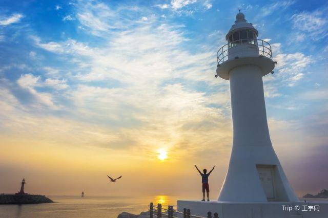 The Ultimate Guide to Sokcho-si You Need to Know
