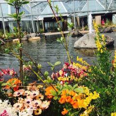 여미지식물원 여행 사진
