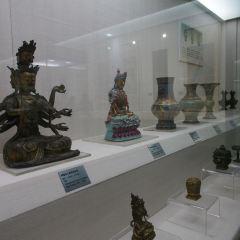 금주시 박물관 여행 사진