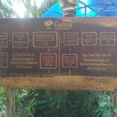 Galina Mud Bath and Spa User Photo