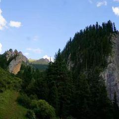 Zecha Stone Forest User Photo