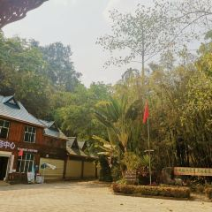 Xishuangbanna Rainforest Valley User Photo