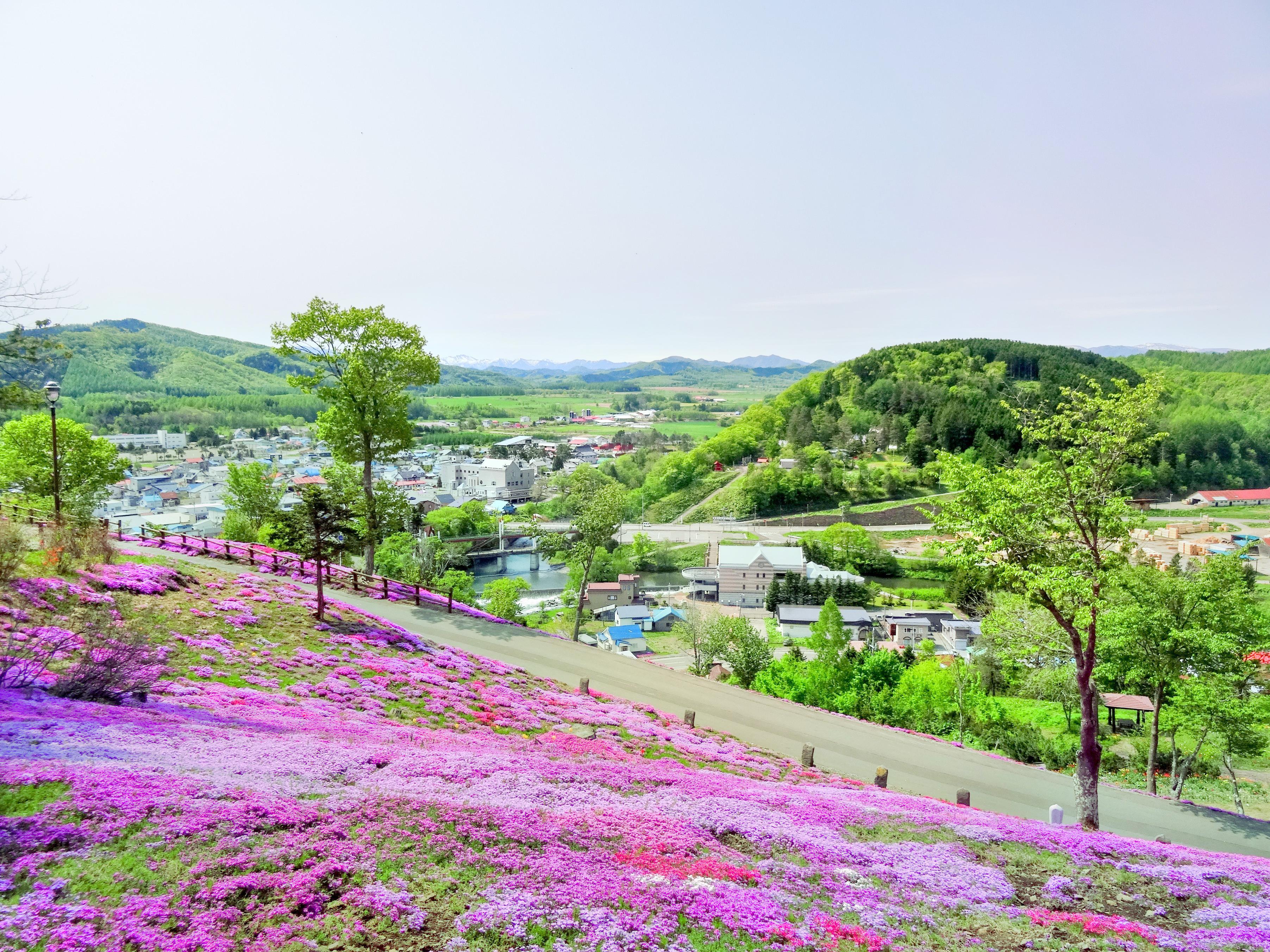瀧上芝櫻公園