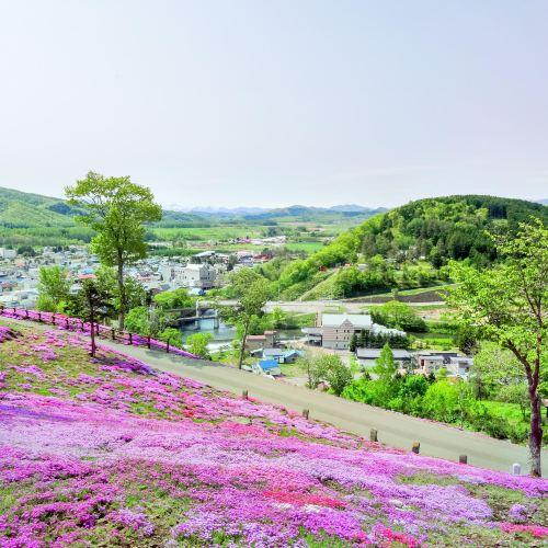 Shibazakura Takinoue Park