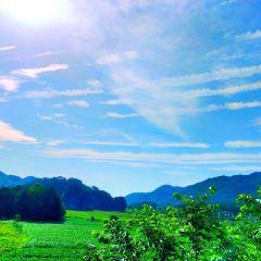 Sichuan Kongshan National Forest Park User Photo