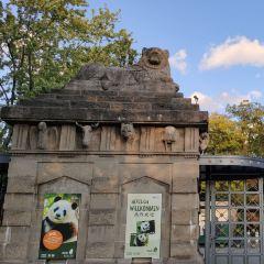 柏林動物園用戶圖片