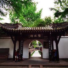 옌화연못 여행 사진