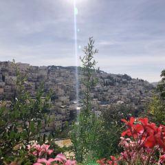 シオンの山のユーザー投稿写真