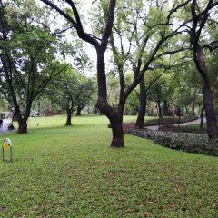 曉港公園張用戶圖片