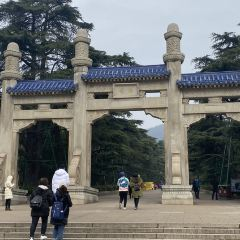 中山陵園風景區用戶圖片