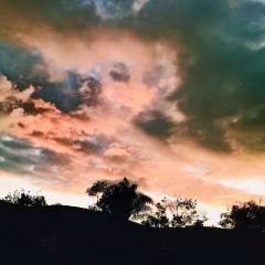 托里派因斯州立公園用戶圖片