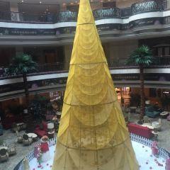 Fu Xuan Chinese Restaurant (Pavilion Century Tower) User Photo