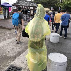 스타벅스 경주대릉원점 여행 사진