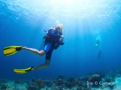 Zhongqian Diving World