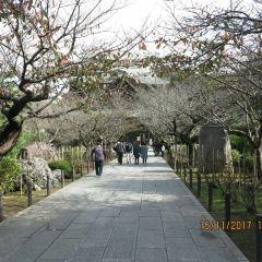 源氏山公園用戶圖片