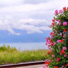 Riviera Beach User Photo