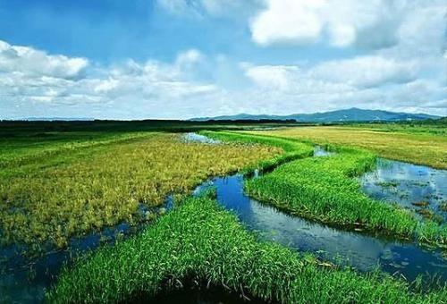 Anbanghe Wetland Park