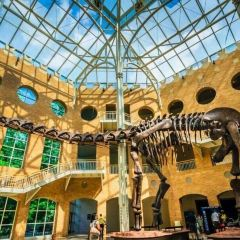 Fernbank Museum of Natural History User Photo
