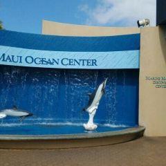 Maui Ocean Center 여행 사진