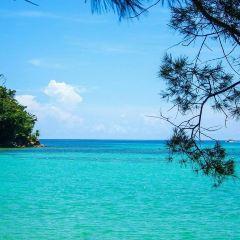 馬穆迪島用戶圖片