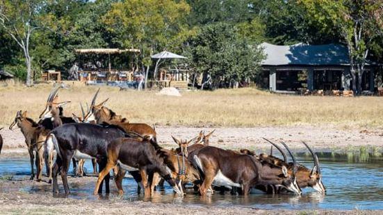 甘果野生動物牧場