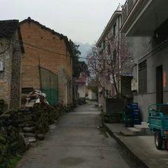 龍崗鎮用戶圖片
