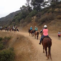 Sunset Ranch Hollywood User Photo