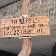 Plan B用戶圖片