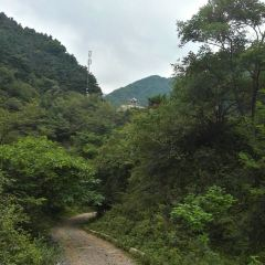 Mt. Jueshan Forest Park User Photo
