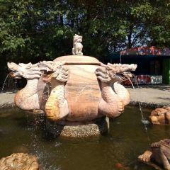 南灣湖茶島用戶圖片