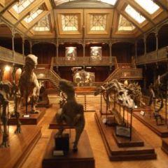 리옹 직물박물관 여행 사진
