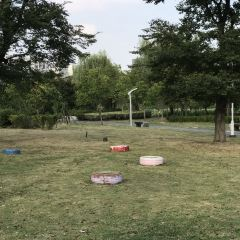 民生公園用戶圖片