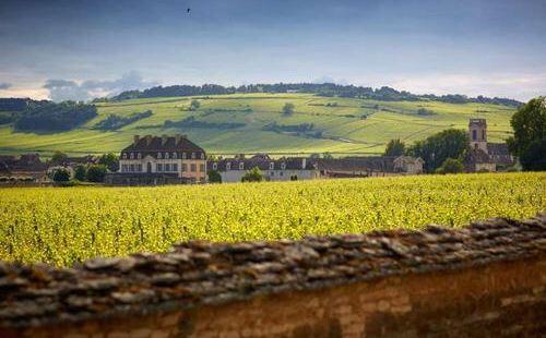波瑪酒庄(Chateau de Pommard)位於法國勃艮