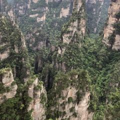 Zhangjiajie National Forest Park User Photo