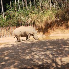 푸저우 동물원 여행 사진